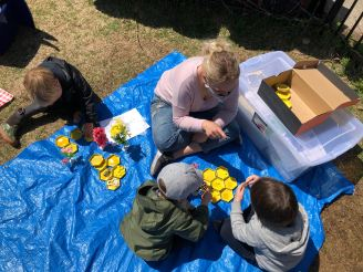 build-a-beehive-activity